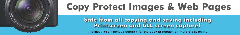 Copy protect web pages and online images from all copy and save